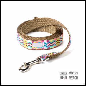 Fashion Print Heavy Duty Nylon Pet Dog Leash pictures & photos
