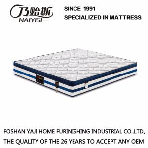 Home and Hotel Used Natural Latex Mattress (FB915) pictures & photos
