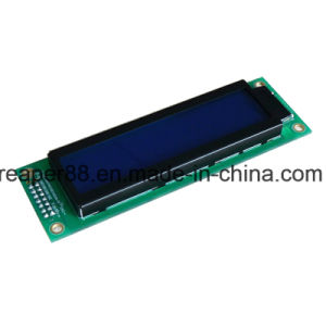 COB Type 20X2 Character LCD pictures & photos