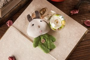 Ivenran Preserved Fresh Flower Green Rabbit Keychain for Gift and Decoration pictures & photos