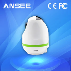 Smart PT IP Camera for Alarm System and Video Surveillance System pictures & photos