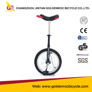 (U1601B) High Quality Balance Unicycle pictures & photos