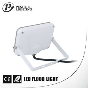Ce, RoHS, TUV, SAA 2700-7000k 10W High IP65 Isolated Driver Floodlights pictures & photos