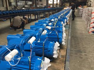 Jet-100 Self Priming High Quality Water Pump pictures & photos