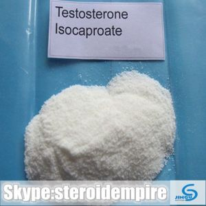 Buy Bodybuilding Steroid Hormone Raw Powder Testosterone Isocaproate Worldwide Safe Delivery pictures & photos