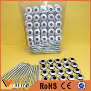 Galvanized Roofing Screw Twist Nail Assembled Roofing Nails with Washer pictures & photos