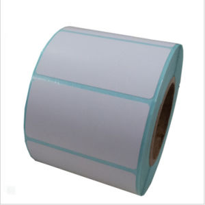 Thermal Transfer Printing Label Custom Printed Roll (JN8756) pictures & photos