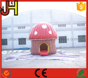 Customized Mini Inflatable Bouncer Castle for Kids pictures & photos