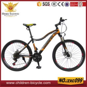 Road Bike /Mbx /MTB Bicycle /City Bikes pictures & photos