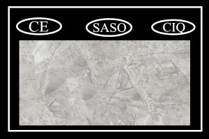 Best Price Interior Tiles Porcelain Tile with 600X1200mm (PD1620602P) pictures & photos
