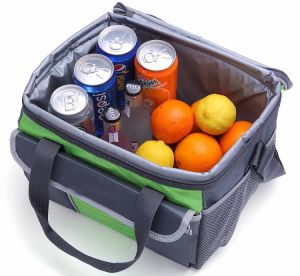Picnic Cooler Tote pictures & photos