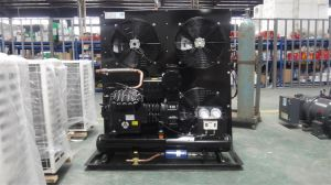 China Hot Sale Low Temperature Air Cooled Condensing Unit for Freezer Room pictures & photos