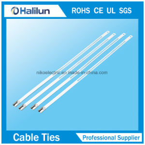 Stainless Steel Epoxy Coated Ladder Multi Barb Lock Cable Tie pictures & photos