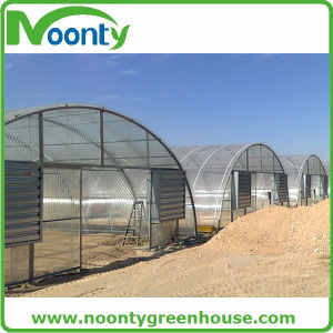 Fiber Glass Greenhouse for Agricultural Farm pictures & photos