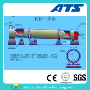 Ce Approved Feed Pipe Drying Equipment for Duck Feed Mill pictures & photos