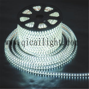 China LED Supplier 24V 2835 SMD La Tira De LED with 3 Year Warranty pictures & photos