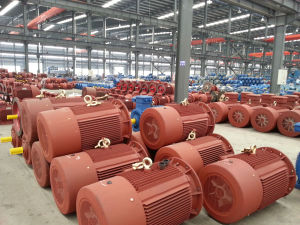 High Efficiency Asynchronous AC Electric Three Phase Induction Water Pump Air Compressor Gear Box Squirrel Cage Motor pictures & photos