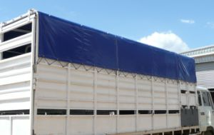 Factory Price PVC Coated Fabrics Tarpaulin for Truck Cover Tb030 pictures & photos