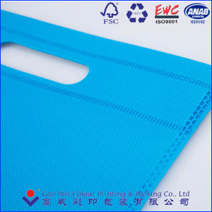 OEM Production Recyclable Non-Woven Types Shopping Bags pictures & photos