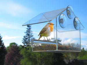 Squirrel Proof Acrylic Window Bird Feeder pictures & photos