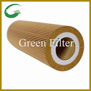 Oil Filter Element for Scania (2022275) pictures & photos