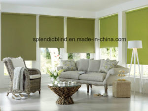 28mm/38mm Two Layer Roller Blind (SGD-R-2538) pictures & photos