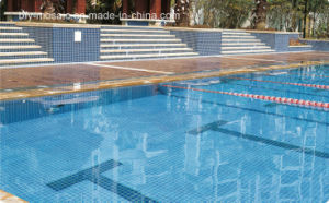 Ceramic Mosaic for Swimming Pool Tile (FYSC48)