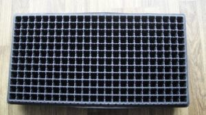 288 Cells Balck PS Flower Pot for Garden Black HIPS Seed Tray pictures & photos