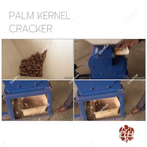 Easy Operating Palm Kernel Sheller Machine with 500kgph Capacity pictures & photos