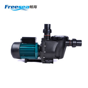 Popular Design 220V 50Hz SAA Approved Swimming Pool Pump Equipments pictures & photos