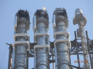 Elevated Flare System in China Supply pictures & photos