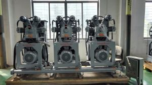 High Pressure Air Compressor/Air Compressor/Pet Air Compressor pictures & photos