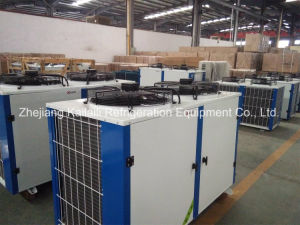 Klzbr404-10 Hermetic Scroll Refigeration Compressor Unit pictures & photos