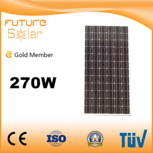 Futuresolar 270W Polycrystalline Solar Module Panel with 10 Yrs Warranty pictures & photos