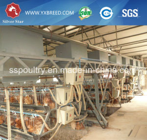 a Type Layer Chicken Cage Livestock Equipment pictures & photos