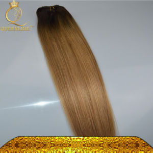 New Fashion Malaysia Human Clip in Hair pictures & photos