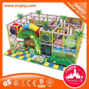 Indoor Jungle Equipment Plastic Children PVC Playground pictures & photos