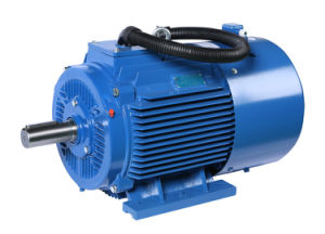 Eco Environmental Friendly High Efficiency Electric Motor pictures & photos