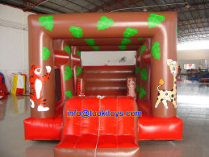 Commercial Inflatable Astrojump for Sale with Certificate (B029) pictures & photos