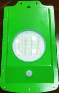 5W Solar Yard Light with PIR Motion Sensor pictures & photos