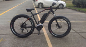 Buy MID Drive Electric Bike Online with Electric Bicycle Motors pictures & photos