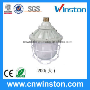 Industrial Flame Proof Explosion Proof Lamp (BAD-200) pictures & photos