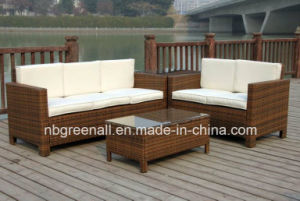 Kd Style Wholesale European Style Furniture for Garden pictures & photos
