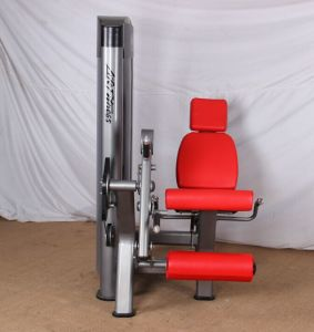 Wholesale Professional Fitness Machine/Gym Machine for Leg Extension (BFT3010) pictures & photos
