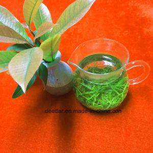 High Mountain Organic Green Tea pictures & photos
