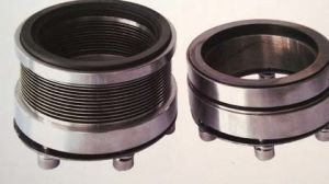 High Temperature Mechanical Seal Comply with DIN24960 pictures & photos