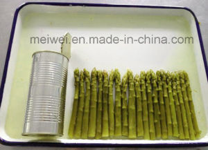 Canned Food 430g Canned Green Asparagus in Tin pictures & photos