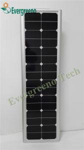 Superior Solar Powered Solar Garden Lighting Syatem with PIR Motion Sensor pictures & photos