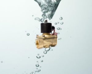 24V DC 2W250-25 Brass Electric Solenoid Water Valve pictures & photos
