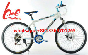 2017 New Design Mountain Bicycle with Good Quality pictures & photos